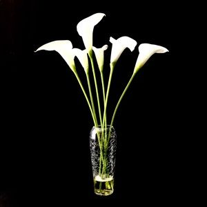 LILIES FLOWER GLASS VASE